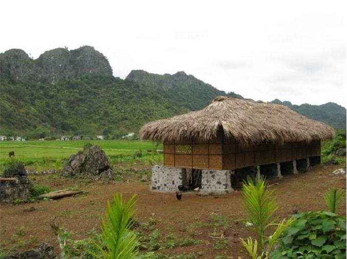 Đảo Cát Bà: Nơi rừng già và biển xanh gặp gỡ - 4