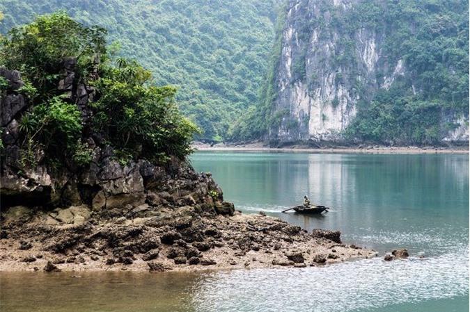 Đảo Cát Bà: Nơi rừng già và biển xanh gặp gỡ - 5