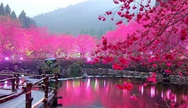 Nhật Nguyệt Hồ