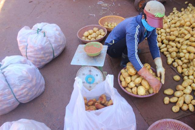 Nhận diện khoai tây Trung Quốc đội lốt Đà Lạt